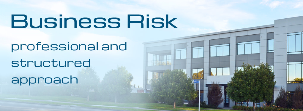 Business Risk Insurance